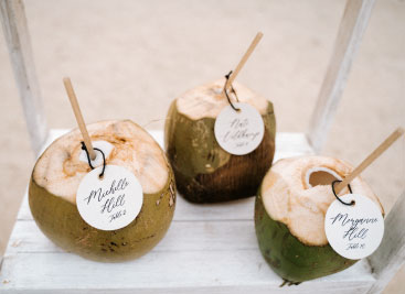 Coconut-find-your-seat